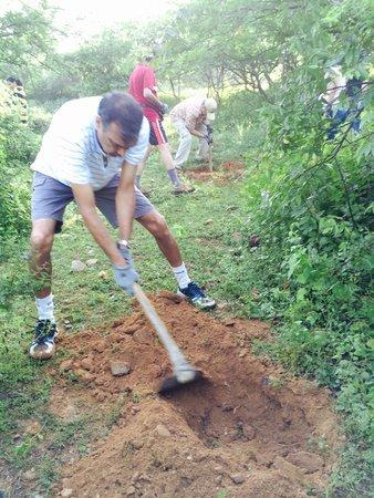 Rawla Bathera Hotel : Forestation work