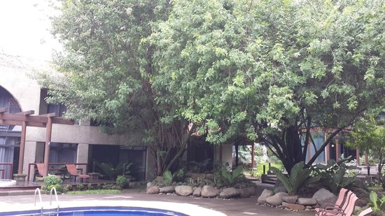 Radisson Hotel San José Costa Rica: La alberca
