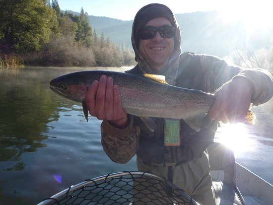 Indian Creek Lodge: I love Steelhead