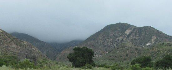 Deukmejian Wilderness Park: View from trail