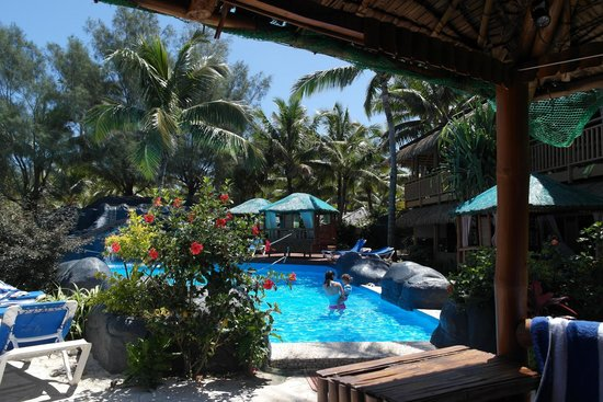 The Rarotongan Beach Resort & Spa : Poolside view
