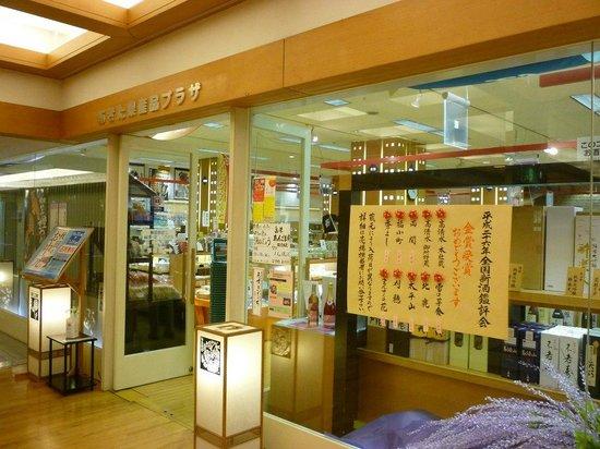 Akita Kensanhin Plaza