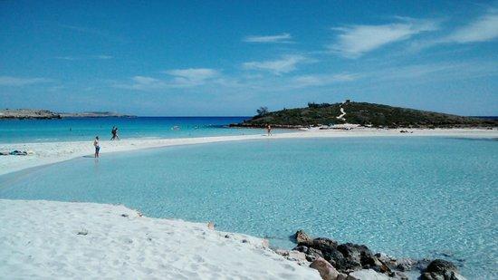 Αποτέλεσμα εικόνας για nissi beach