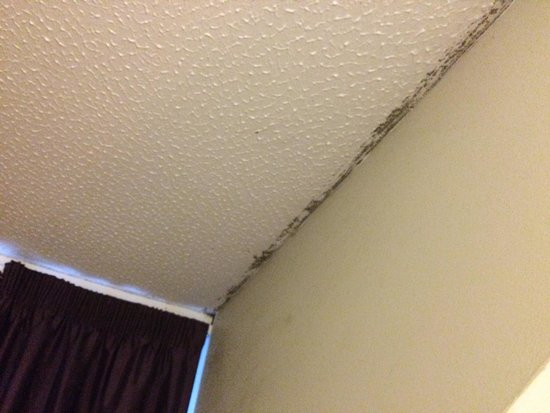Premier Inn Manchester Trafford Centre South Hotel: Room 58, with added mold