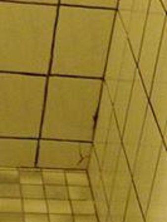 Parkview Hotel Sydney : bathroom