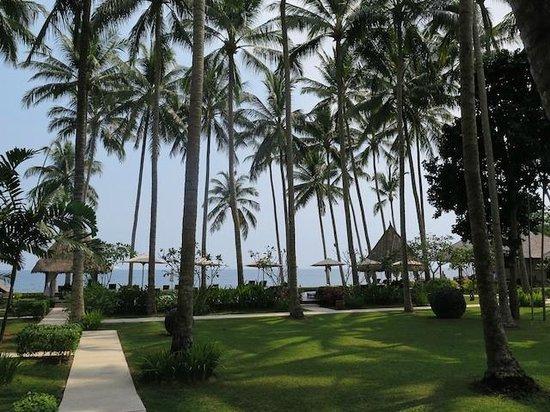 The Chandi Boutique Resort & Spa : Blick aus dem Zimmer