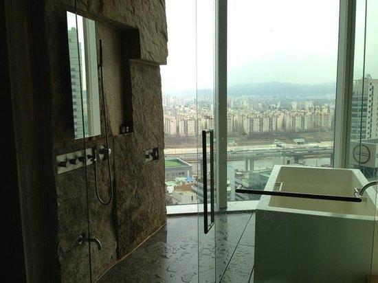 Park Hyatt Seoul: Shower with a view