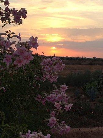 Ecolodge Quaryati : Sunset romance