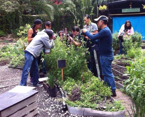 Fotopaseos: Durante el Fotopaseo de enseñanza Macro