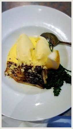 Club Lemon Tree: One of the specials - barramundi with mash and beurre blanc.