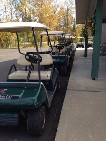 Hill City, MN: Army of golf carts to rent
