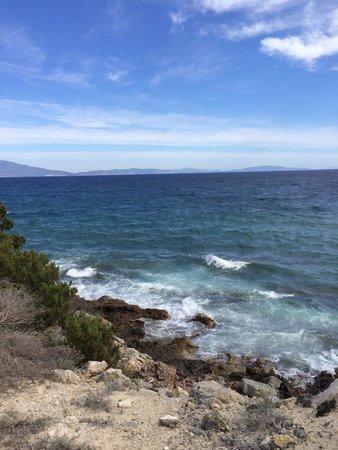 Isola di Pianosa: Scorcio dalla bici