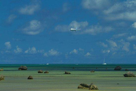Sawada no hama Beach : 佐和田の浜から訓練飛行を望む