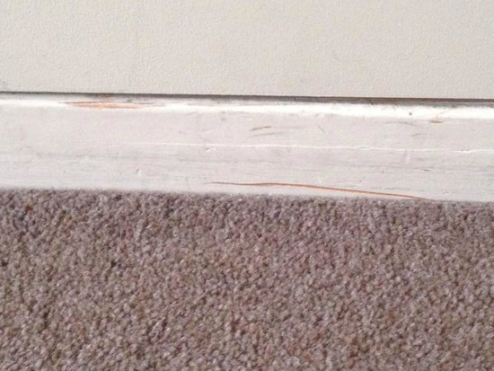 Oaks Goldsbrough Apartments: scuffs on every wall and floors