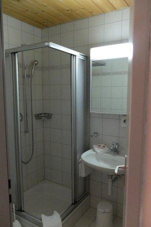 Hotel Ladina : Zimmer 3 Nassbereich