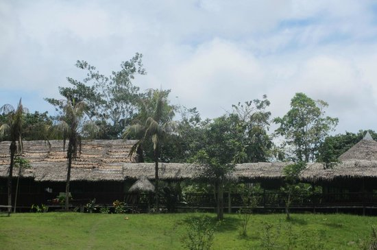 Amazon Eco Tours & Lodge: Vista del lodge