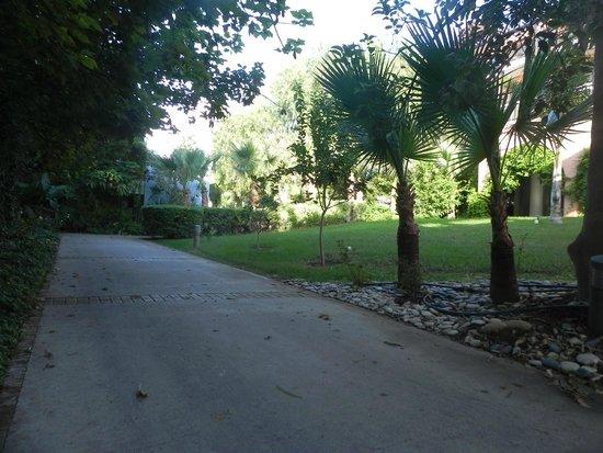 Aldiana Cyprus: beautiful vegetation at hotel