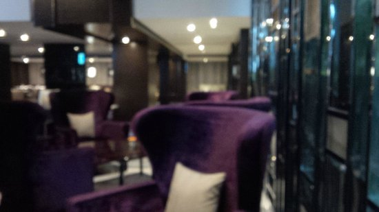 Radisson Blu Plaza Delhi : Lounge chair