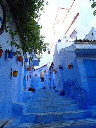Médina : 青一色の風景