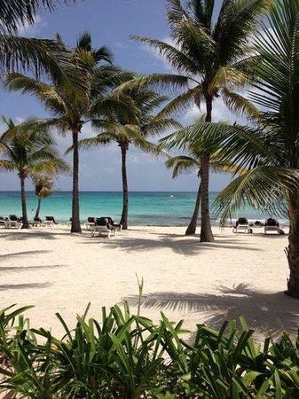 Barcelo Maya Caribe: la playa