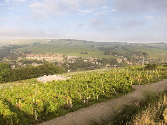 Holmfirth Vineyard : Looking towards Holmfirth