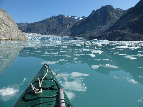 Glacier Bay Sea Kayaks - Day Tours: McBride Glacier