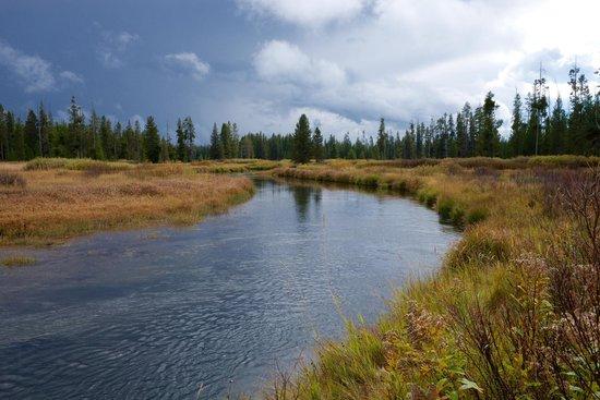 Wildland Llamas: Bechler River
