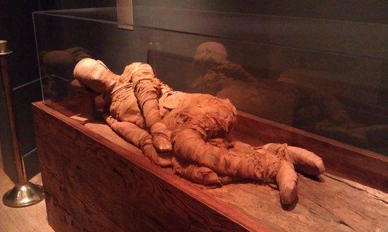 Michael C. Carlos Museum: Never knew mummies were originally posed naturally