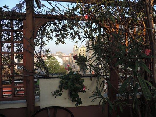 Hotel Metro: View From Breakfast Terrace