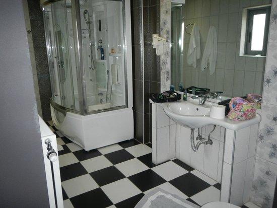 Areos Hotel: bathroom with insane shower
