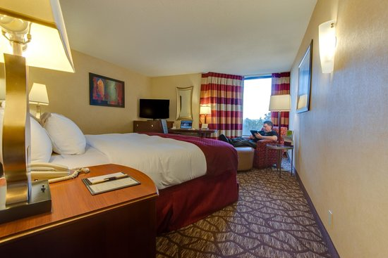 DoubleTree by Hilton Murfreesboro: Guest Room