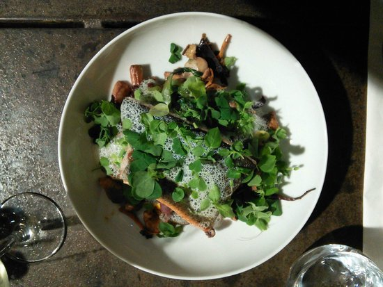 la maroquinerie : the trout on a bed of mushrooms and covered in salad with a foamy reduction