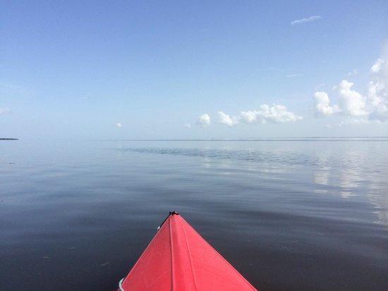Captiva Kayak Company & Wildside Adventures: open water