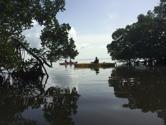 Captiva Kayak Company & Wildside Adventures: End of the trail
