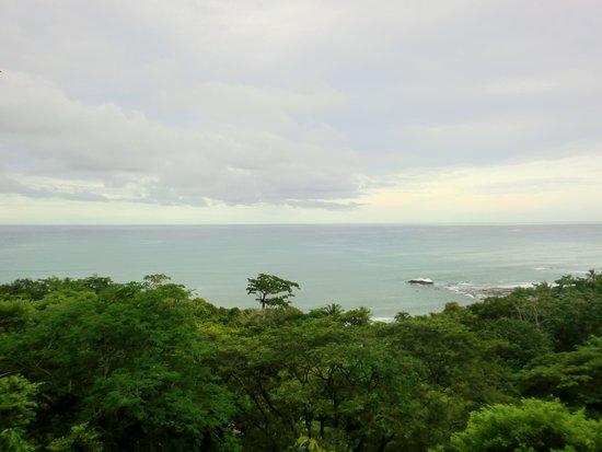 Pachamama Tropical Garden Lodge: Aussicht