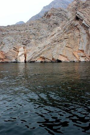 Oman Fjords : Golfinhos pelo caminho