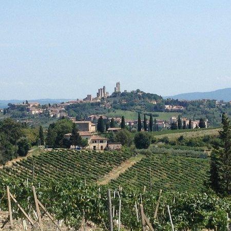 Agriturismo Il Vecchio Maneggio: Vue depuis l'agritourisme