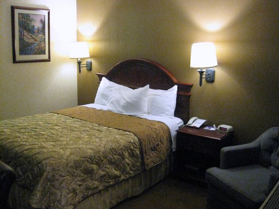 Dynasty Suites Redlands: We messed up the pillow/bedspread before I took the pic.