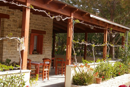 Hotel Neos Matala: There are grape vines that provide more shade in the summer
