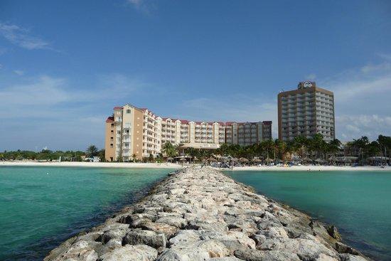 The view from our room i miss it already picture of divi aruba phoenix beach resort palm - Divi aruba beach ...