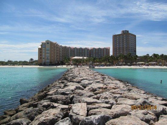 Divi Aruba Phoenix Beach Resort: The Divi