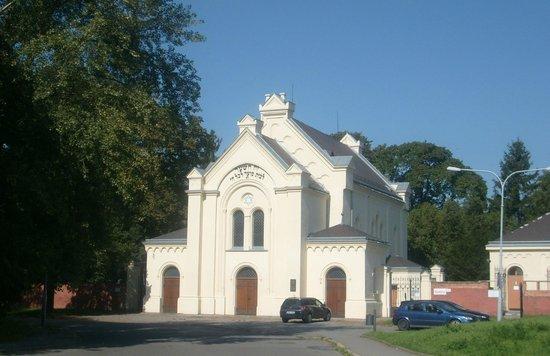 The Brno Jewish Cemetery
