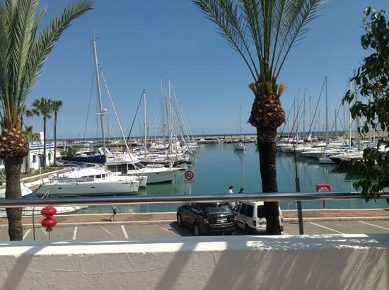 Puerto Deportivo de Estepona : The marina