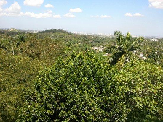 Convento De Santa Clara: Ernest have a fantastic plot