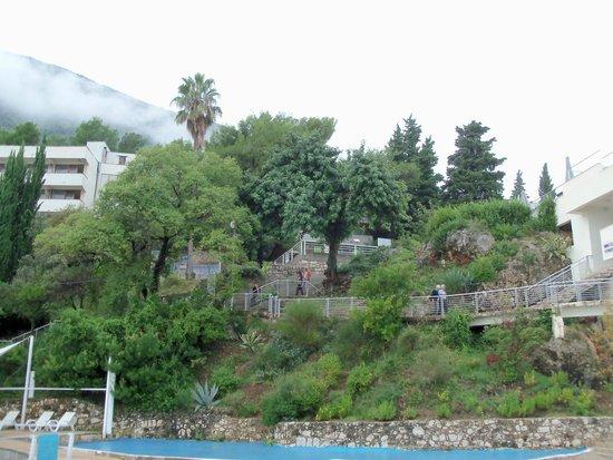 Precise Club Hotel Riviera Montenegro: restaurant