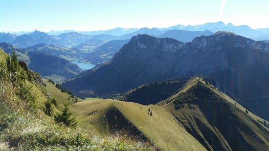 Rochers-de-Naye : Blick Richtung Berner Alpen