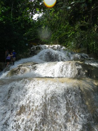 Peat Taylor Tours: Dunns River Falls