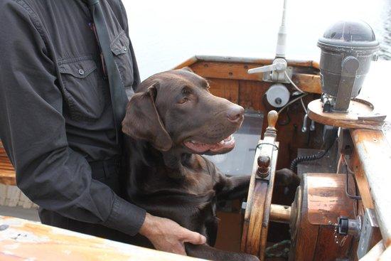 Silver Queen River Cruises: Sea Dog ?