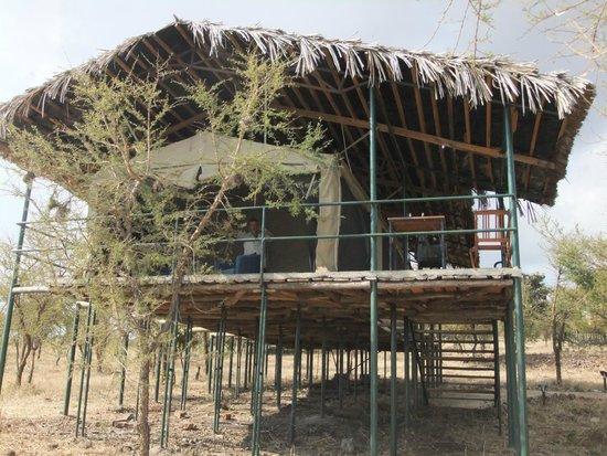 Ngorongoro Wildcamp: Tent
