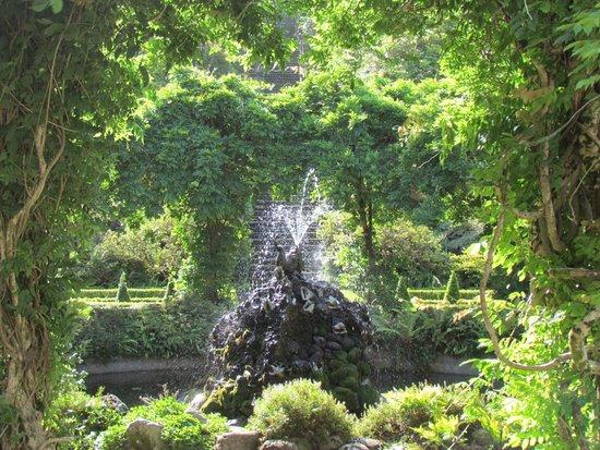Bantry House & Garden : Giardino